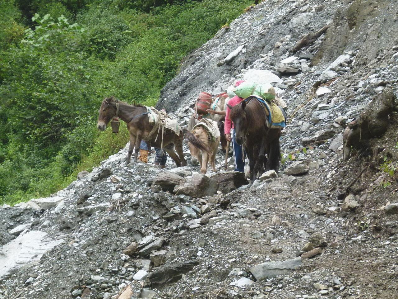 Photo of Tagebuch einer Tour durch Nepal – Tag Elf
