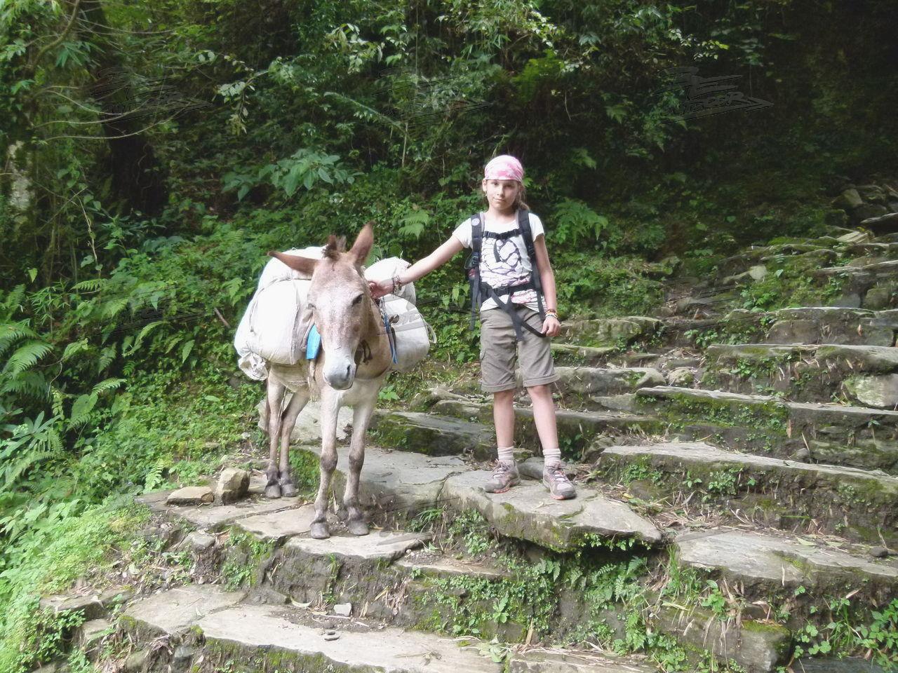 Photo of Tagebuch einer Tour durch Nepal – Tag Zwölf