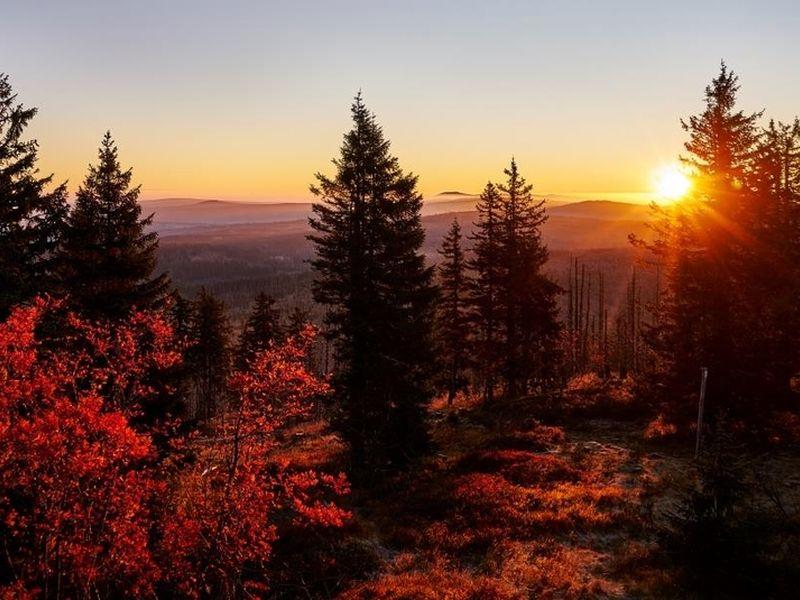 Photo of Herbstzeit im Nationalpark Bayerische Wald
