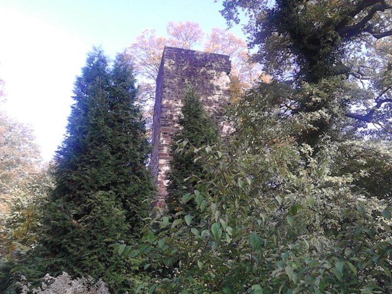 Photo of DIE RUINEN unserer HEIMAT – Der Kattenturm