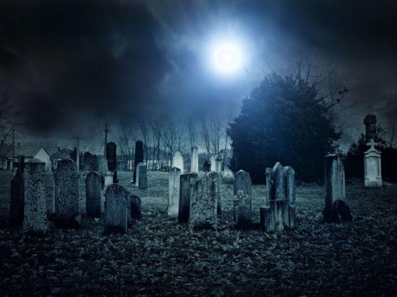 Photo of Halloween – Tipps für die Nacht des Grauens