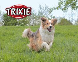 (c)Trixie