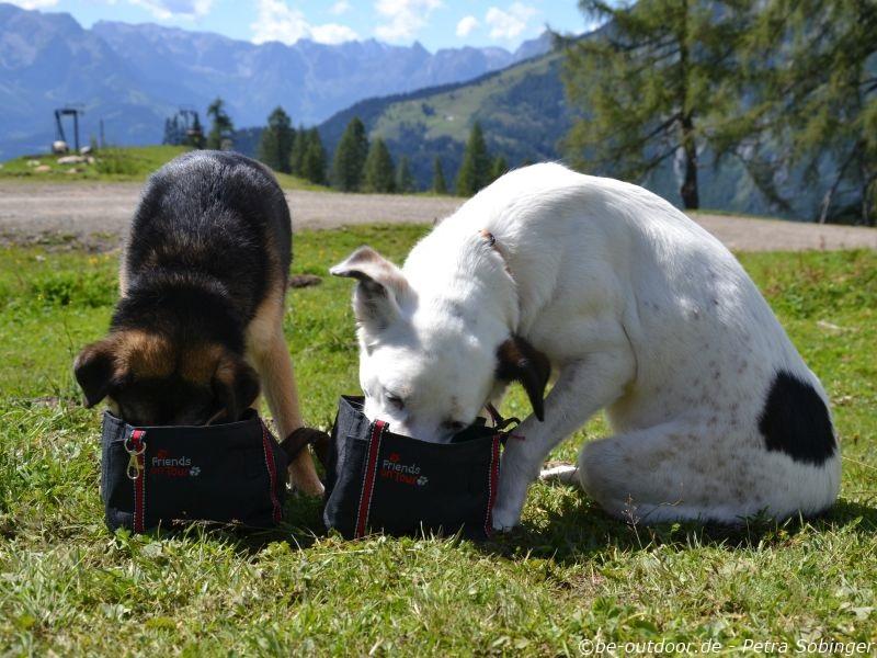 """Trixie """"Friends on Tour"""" Wassernapf (c)be-outdoor.de"""