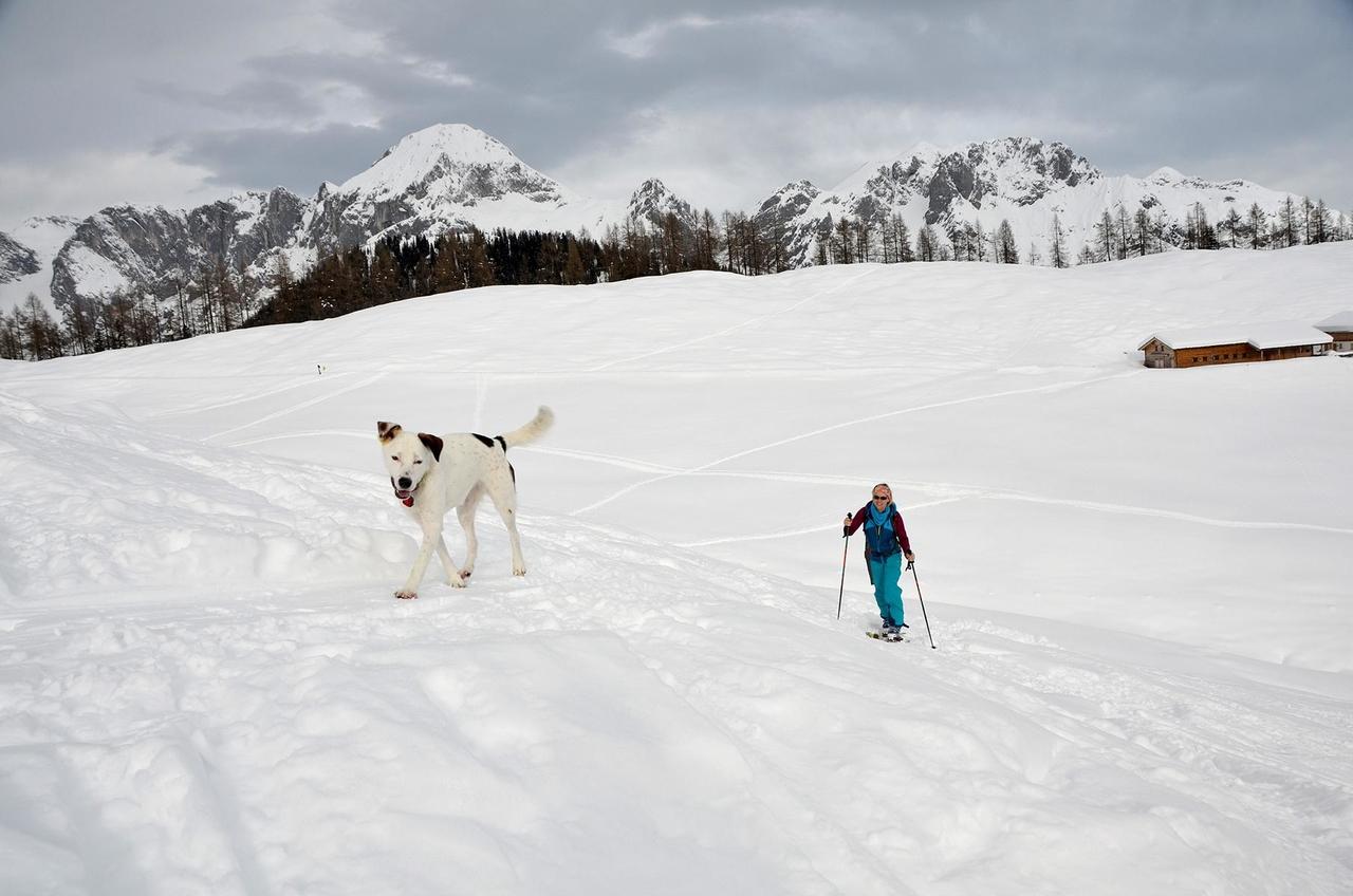 Photo of Skitouren gehen aber richtig – Regeln, Tipps & Tricks