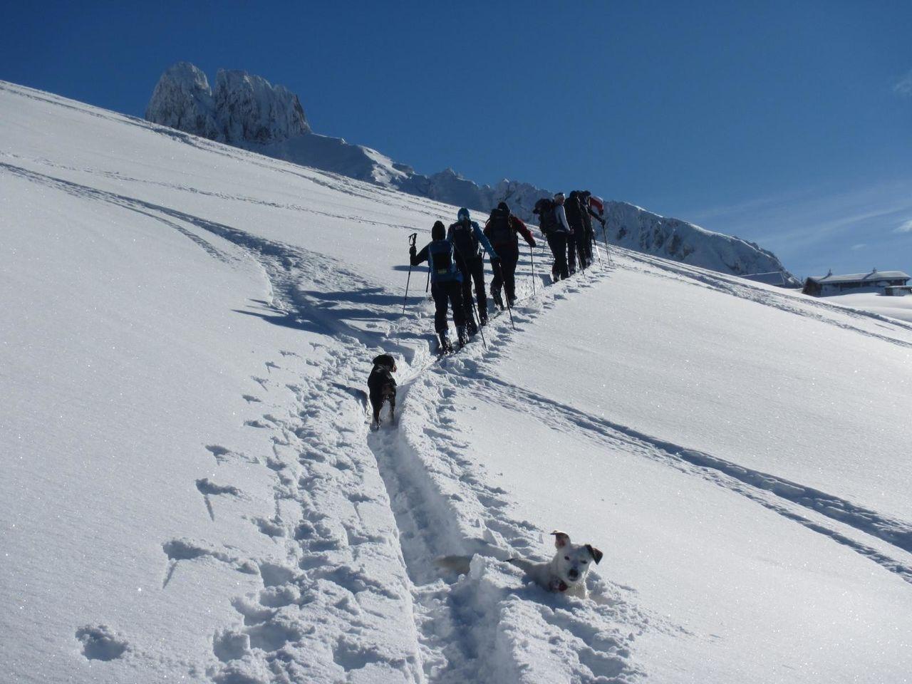 skitourskitourenwinteratladiescampaufstiegandereperspektive_18