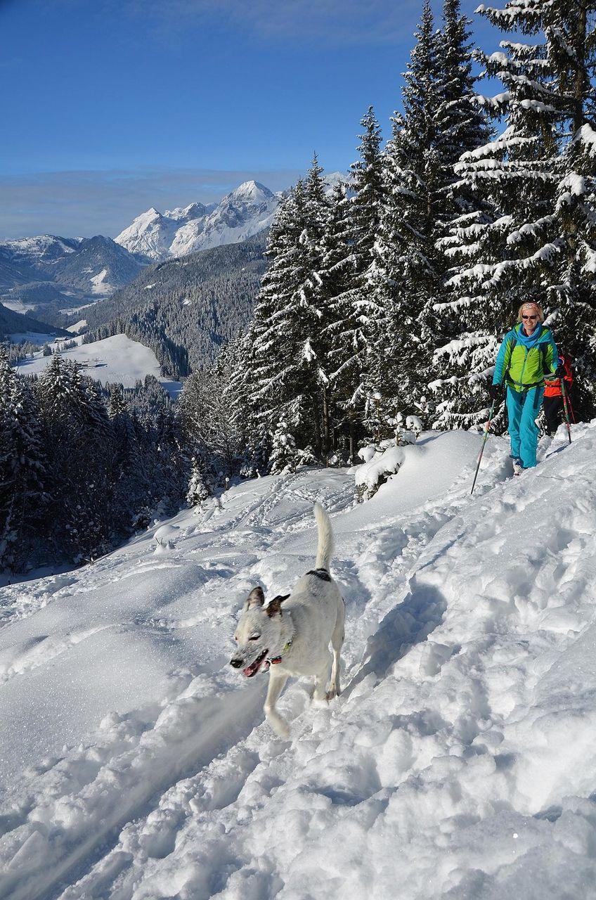 skitourskitourenwinteratladiescampfotohpkreidl228_18