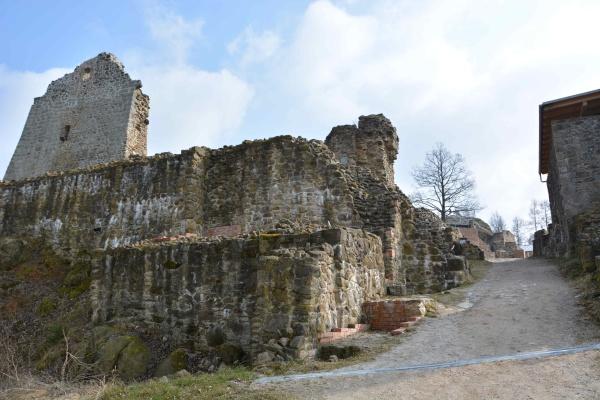 DIE_RUINEN_unserer_HEIMAT_Burg_Runding (1)