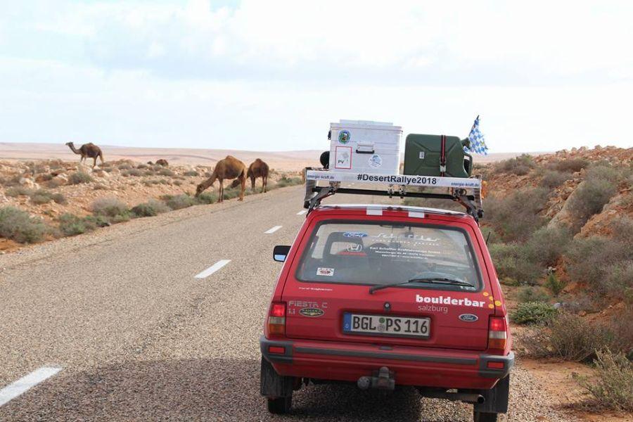 DesertRallye2018_Tag9_Marokko_2