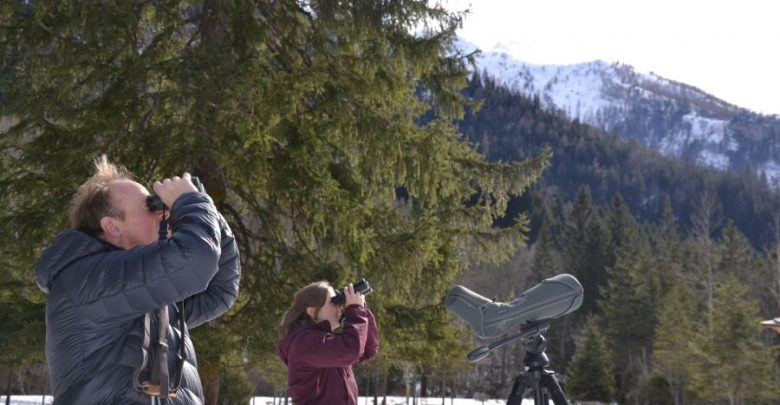 Photo of Unterwegs mit dem Adlerteam im Nationalpark