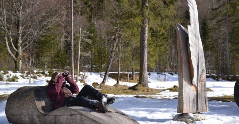 Photo of Nationalpark Berchtesgaden – Aufgepasst auf die Steinadler