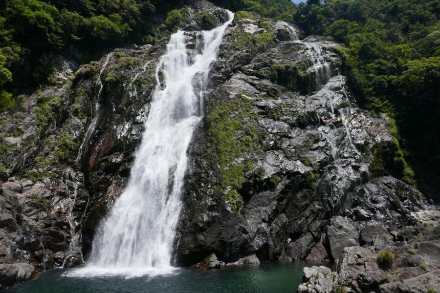 Reisetagebuch Elena und Mateo - Yakushima Insel