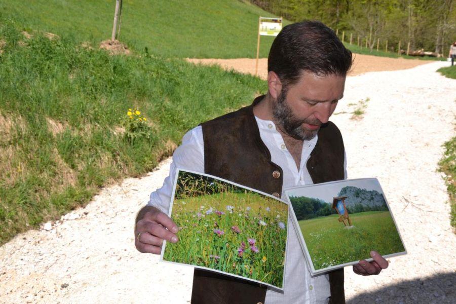 Biosphärenregion Berchtesgadener Land - Wildbienenprojekt in der Ramsau (Dr. Peter Loreth)