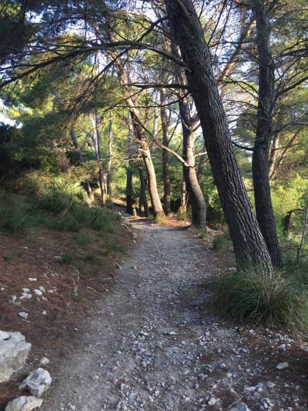 Wanderung zur Ermita de Betlem auf Mallorca