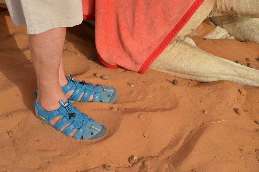 Zwei Keenies auf Reisen - CNX Sandale auf Tour - Folge Sechs - Kamelreiten