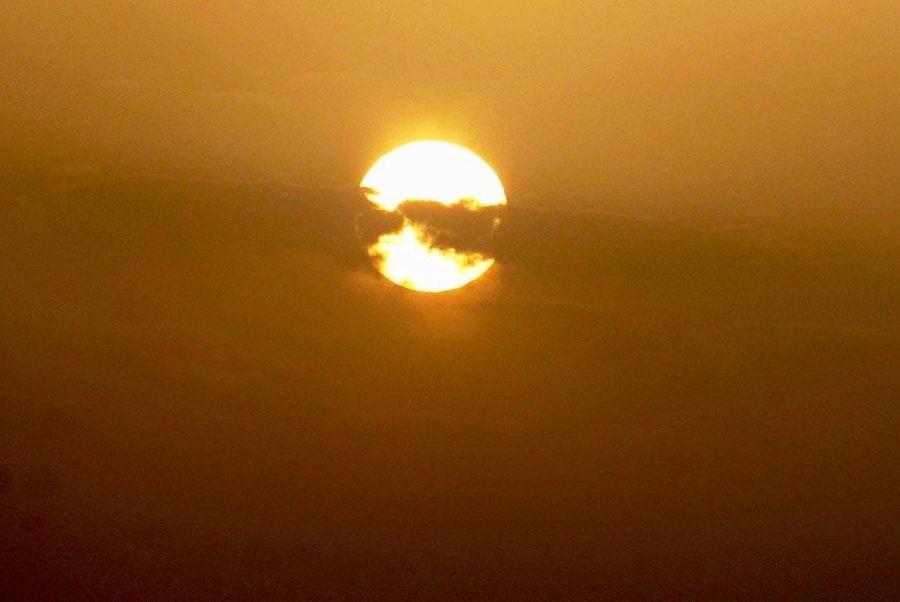 Keenies auf Reisen - Folge 7 - Wüstensafari