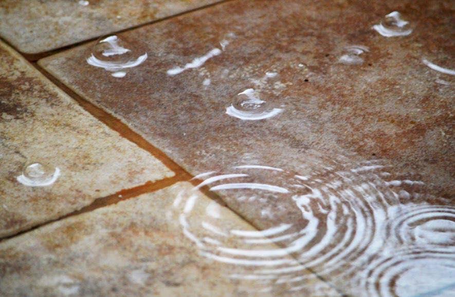 Keenies auf Reisen - Folge 8 - Wüstenregen