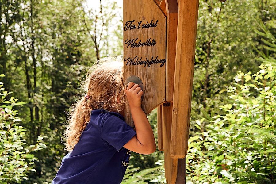 Natur pur für Groß und Klein - Waldwipfelweg © Marco Felgenhauer - Woidlife Photography