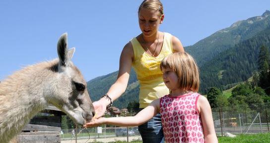 Obertauern - Spaß für groß und klein im Wildpark (c)TVB Obertauern