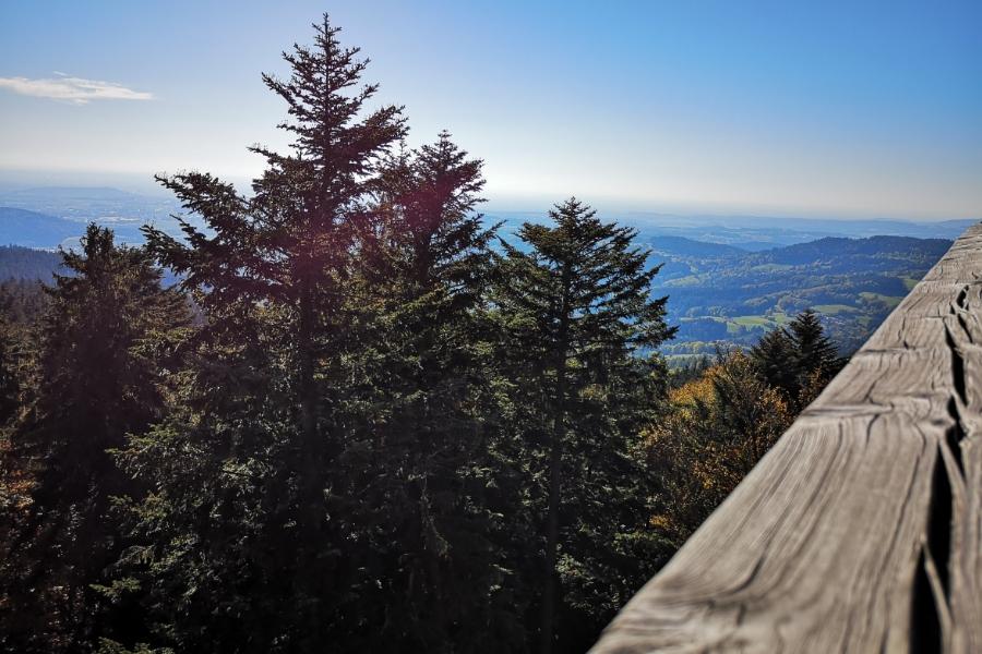 WaldWipfelWeg - luftige Höhen ©be-outdoor