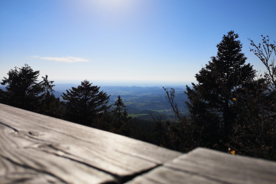 WaldWipfelWeg -herrlicher Blick ©be-outdoor