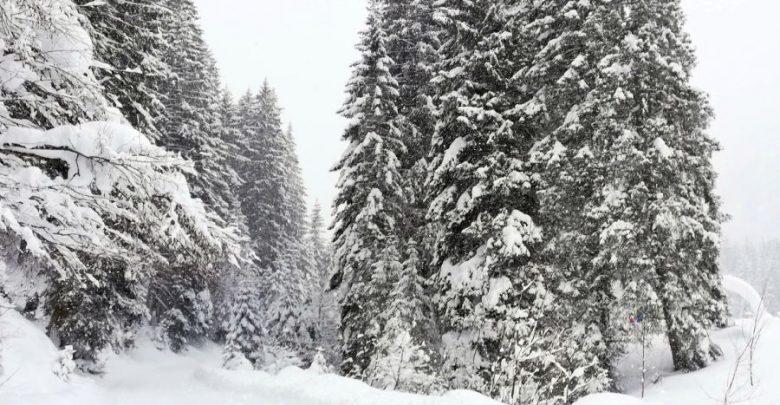 Winterzeit in den Bergen