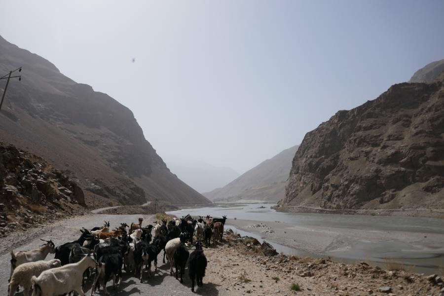 Reisetagebuch Elena und Mateo - per Anhalter auf dem Pamir Highway