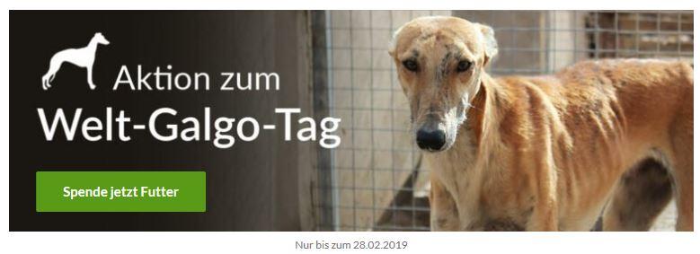 Photo of Spendenaktion: Die schreckliche Wahrheit über den 1. Februar