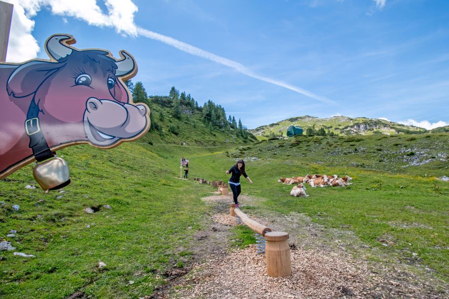 (c)Zauchensee - Kuhparkuhr
