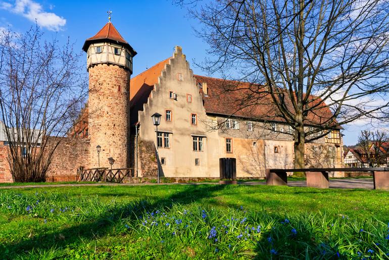 (c) shutterstock Michelstadt - Wilde & Partner
