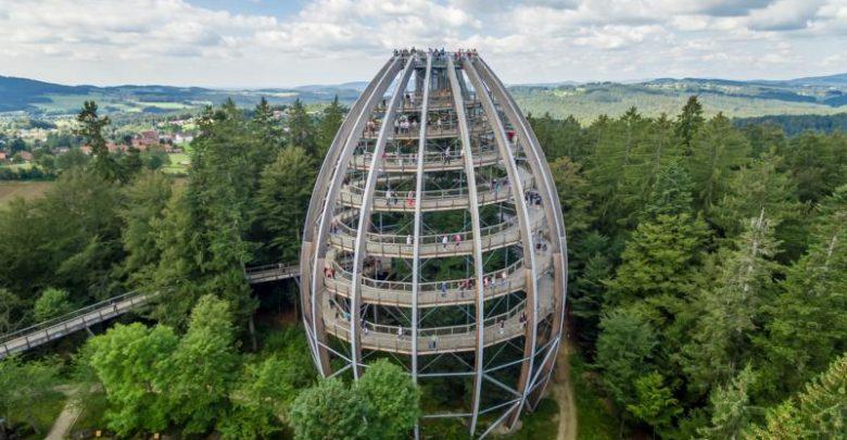Photo of Das Baum-Ei feiert Geburtstag – 10 Jahre Baumwipfelpfad Bayerischer Wald