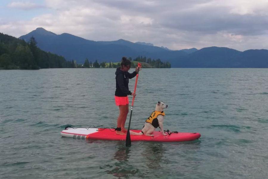 (c) Tim Sobinger - Ruff Wear Hundeschwimmweste K9 Float Coar