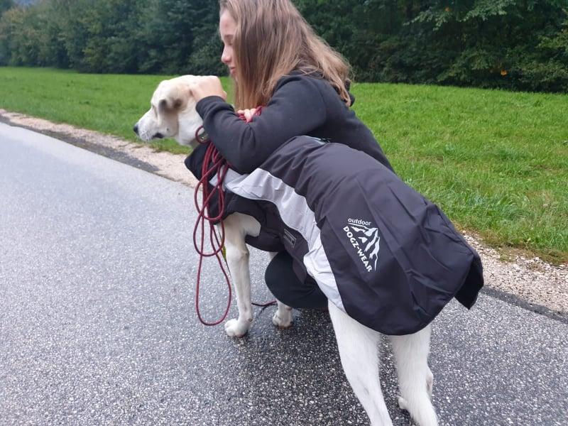(c)Tim Sobinger - Wolters Skijacke Dogz-Wear