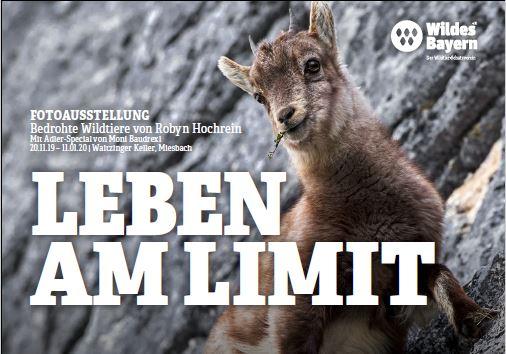(c)Wildes Bayern - Leben am Limit