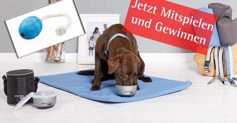 Photo of Wolters Cat&Dog – Jetzt Mitspielen und Gewinnen