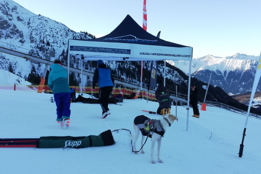 (c)be-outdoor.de - Wolters Skijacke Dogz Wear