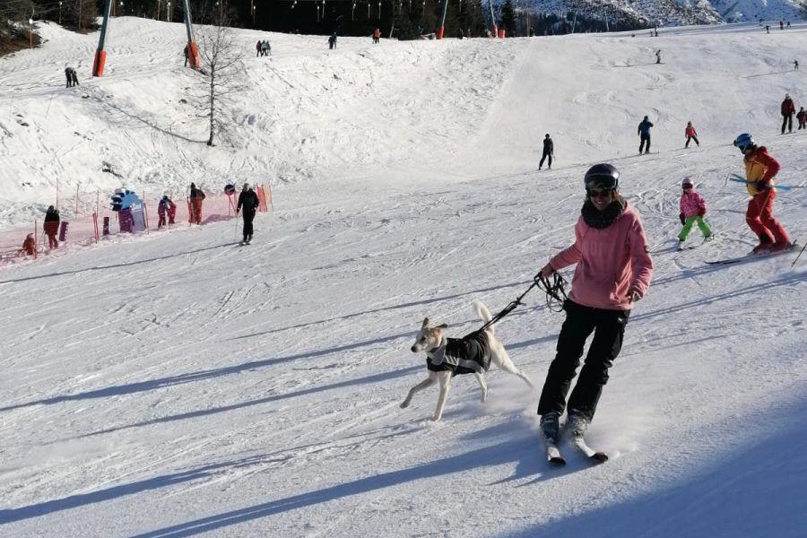 Produkttest Wolters Skijacke Dogz Wear be