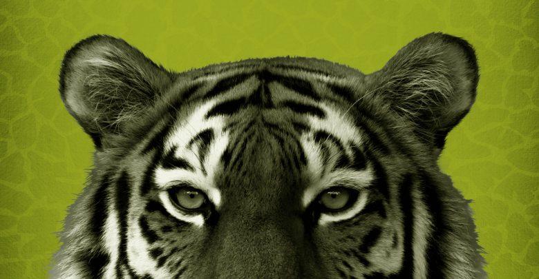 (c)Zoo Hellbrunn - Mia san Tier