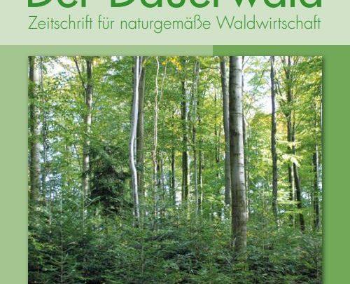 Photo of Der Dauerwald – Wer erzählt die besten Jagdgeschichten?