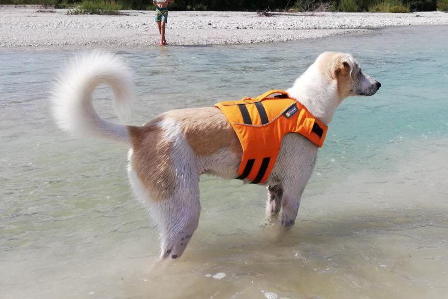 (c)Be-outdoor.de - Ruffwear Schwimmweste Float Coat