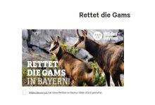 """Photo of """"Rettet die Gams"""" – über die Petition auf Change.org"""