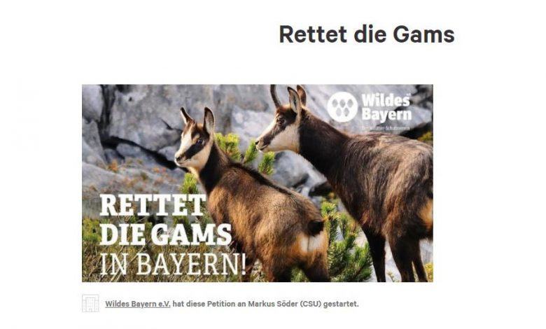 "Photo of ""Rettet die Gams"" – über die Petition auf Change.org"