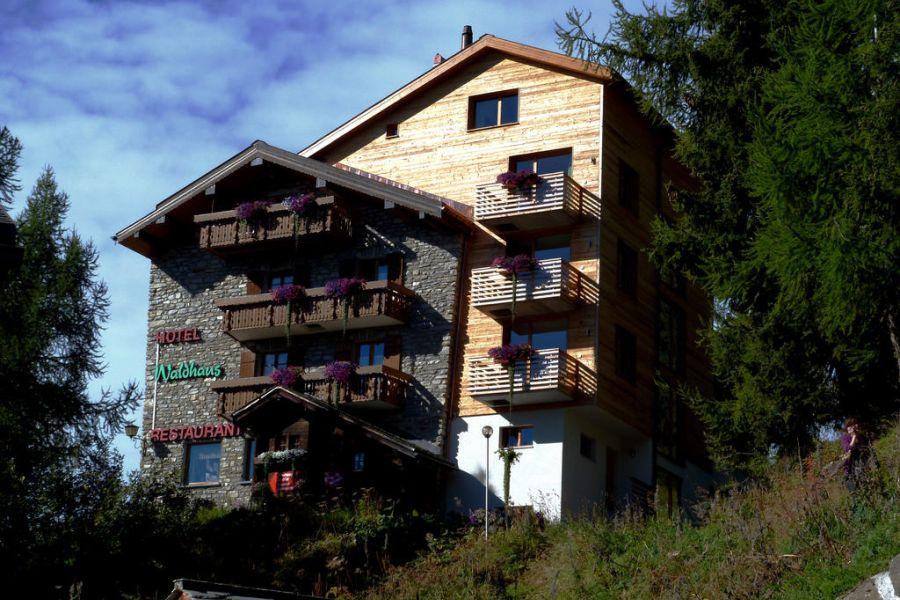 (c)Hotel Waldhaus Bettmeralp