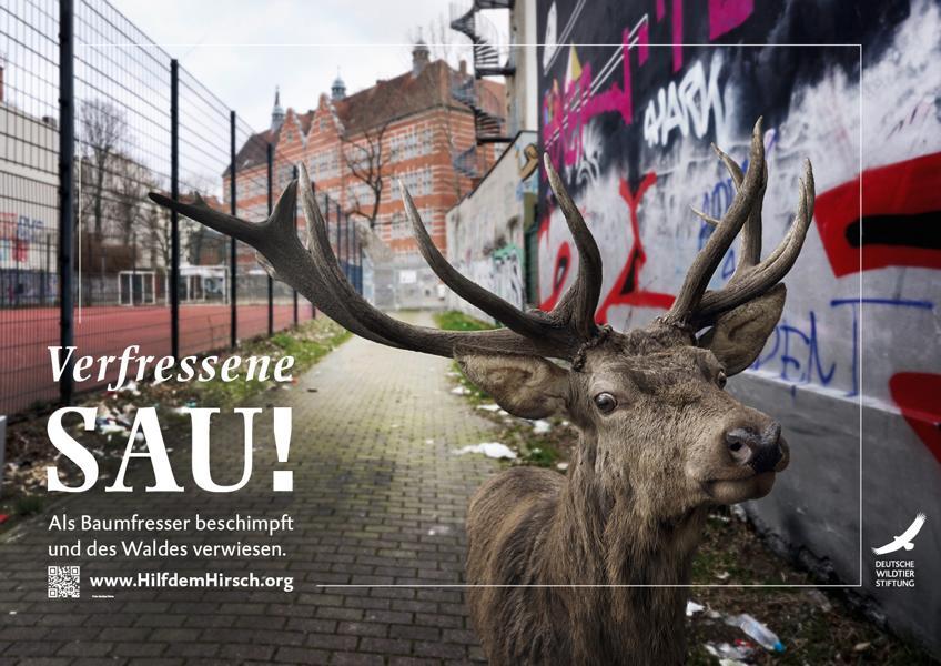 (c)Deutsche Wildtier Stiftung Kampage - Mehr Lebensraum für den Rothirsch