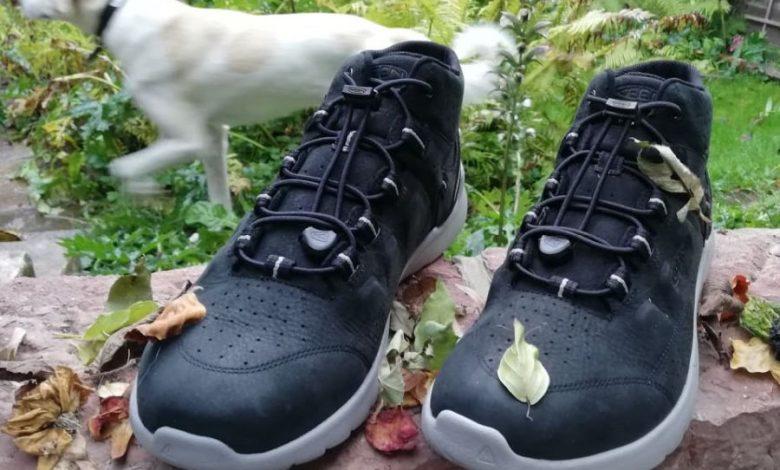 Photo of Aktuell im Test – Keen Sneaker Highland Chukka