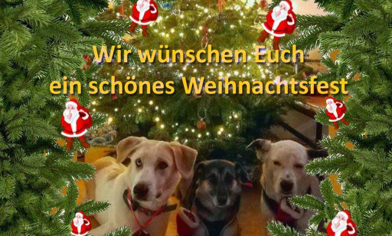 Photo of Fröhliches Weihnachtfest und schöne Weihnachtstage