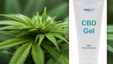 Photo of Aktuell im Test – Adrexpharma Cannabis Cooling Gel