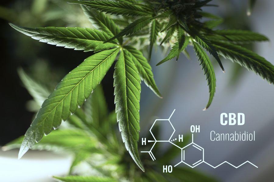 (c)Adrex Pharma Cannabis Cooling Gel