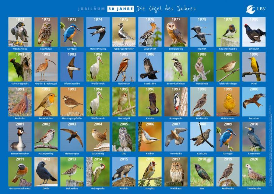 (c)LBV - Nabu - Wahl zum Vogel des Jahres 1971 bis 2020