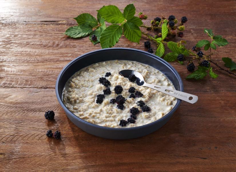 (c)TreknEat - Protein Porridge