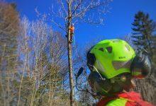 Photo of Heli-Baumfällaktion über den Dächern von Berchtesgaden